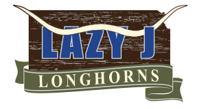 Lazy J Longhorns